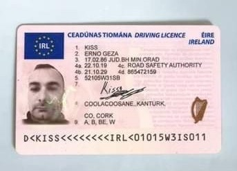 Apply for your Irish Driving licence.